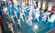 stage karate 26 novembre 2017 (35)