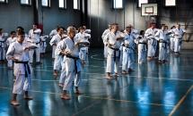 stage karate 26 novembre 2017 (7)
