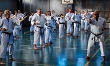 stage karate 26 novembre 2017 (9)