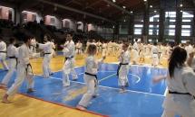 Stage Karate 5 Febbraio 2017 (1)
