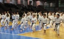 Stage Karate 5 Febbraio 2017 (3)
