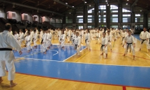 Stage Karate 5 Febbraio 2017 (4)