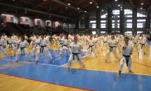 Stage Karate 5 Febbraio 2017 (5)