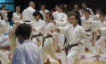 Stage Karate 5 Febbraio 2017 (6)