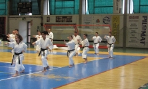 Stage Karate 5 Febbraio 2017 (7)