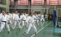 Stage Karate 5 Febbraio 2017 (8)