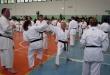 Stage di Karate a Zingonia, 03/05/2015