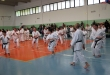Stage di Karate a Zingonia, 03/05/2015