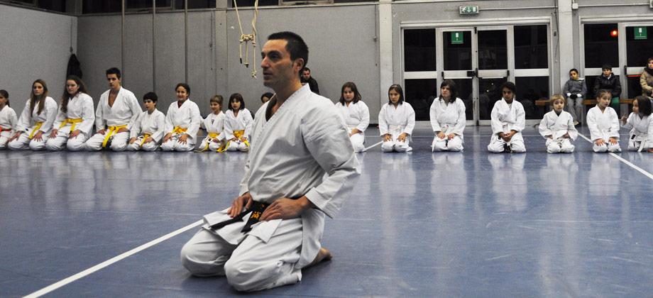 Fabio Raimondo / SEISHINDO - Corsi di Karate per adulti e bambini a Seregno