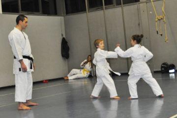 Esame di Karate a Seregno / SEISHINDO - Corsi di Karate per adulti e bambini a Seregno.