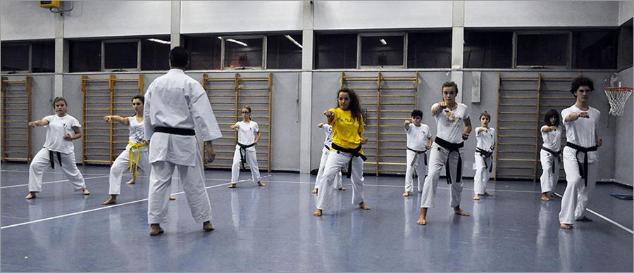 Lezione Karate, Ottobre 2015 width=